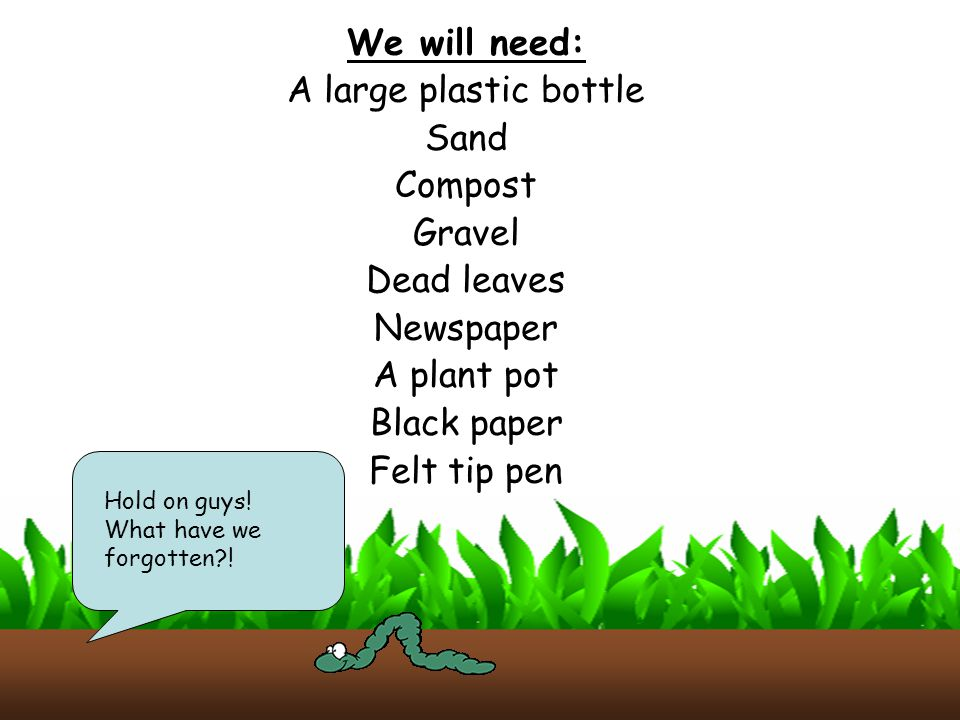 We will need: A large plastic bottle Sand Compost Gravel Dead leaves