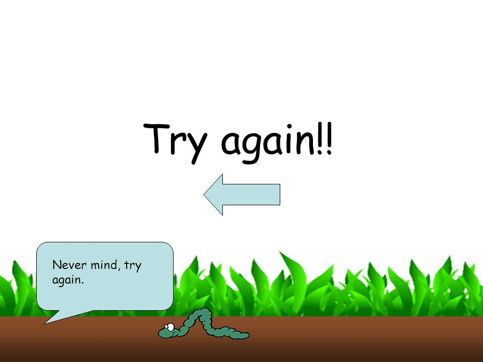 Try again!! Never mind, try again.