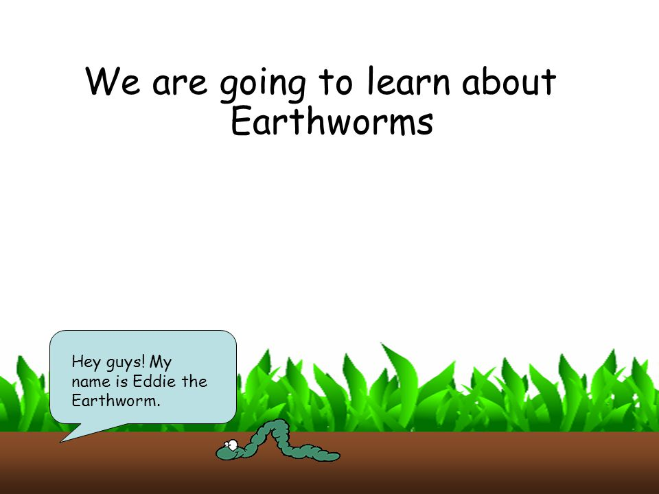 We are going to learn about Earthworms