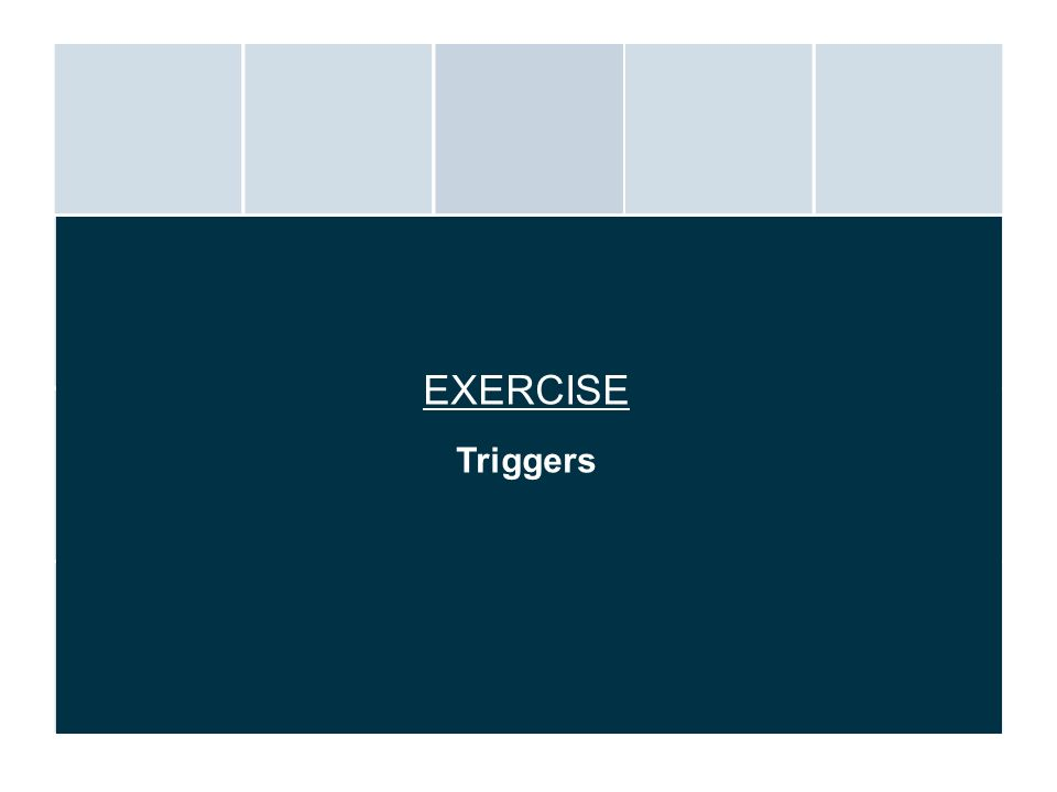 EXERCISE Triggers.