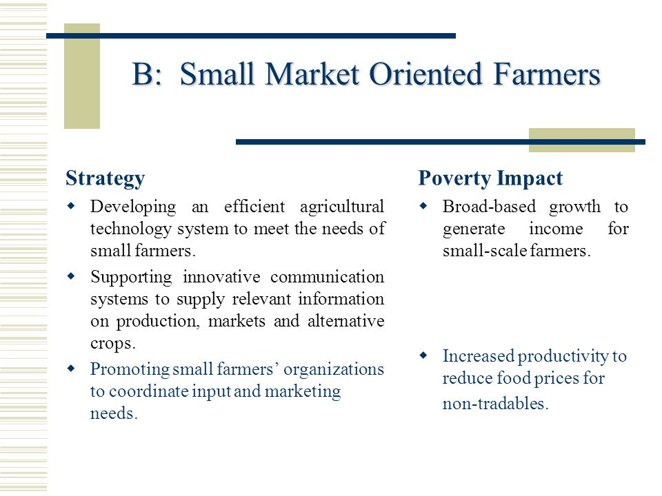 B: Small Market Oriented Farmers