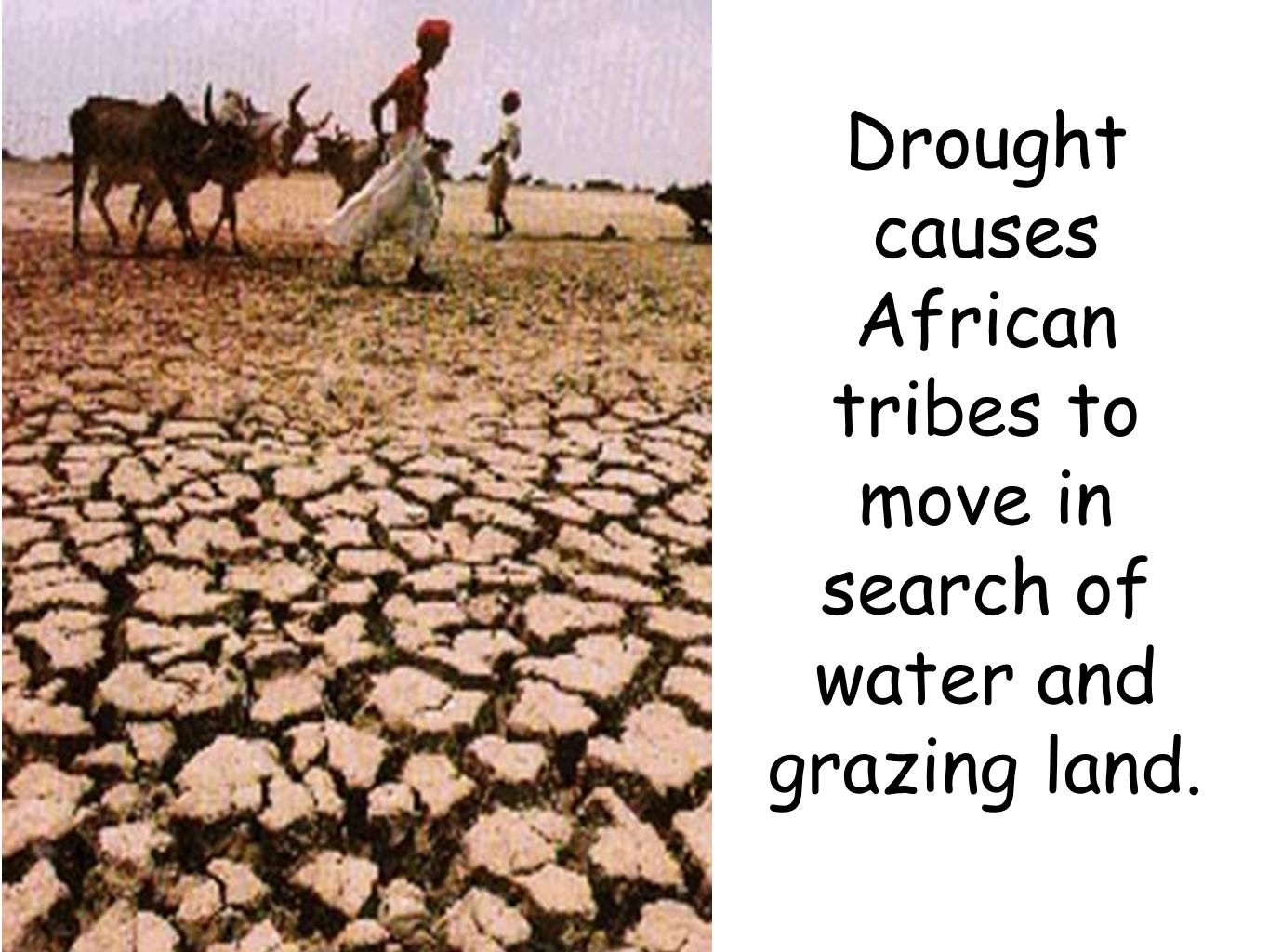 Drought causes African tribes to move in search of water and grazing land.
