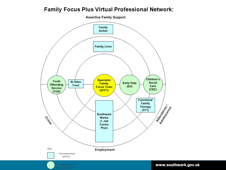 Family Focus Plus Virtual Professional Network: