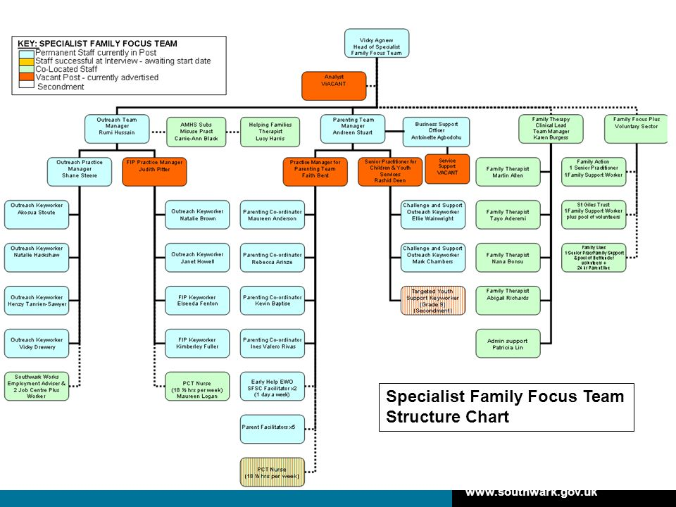 Specialist Family Focus Team Structure Chart