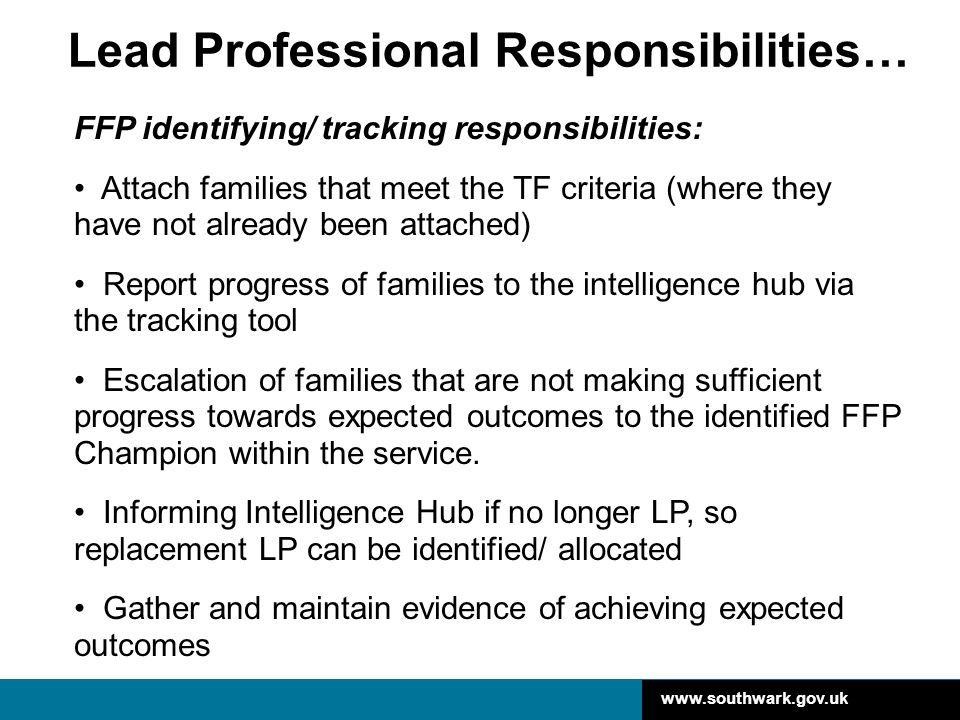 Lead Professional Responsibilities…