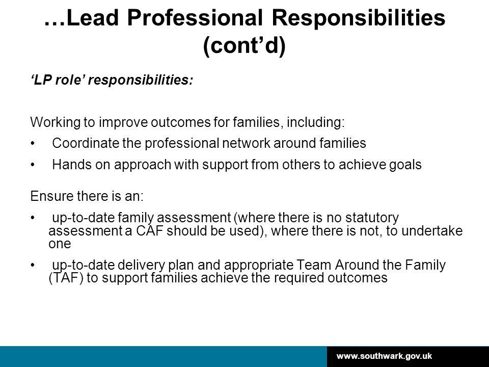 …Lead Professional Responsibilities (cont'd)