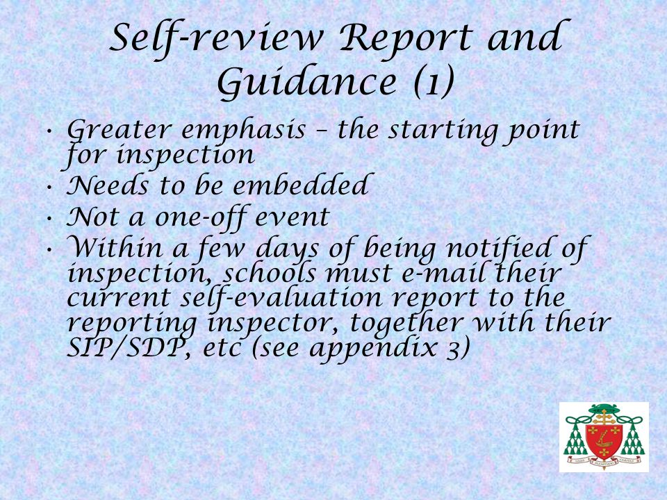 Self-review Report and Guidance (1)