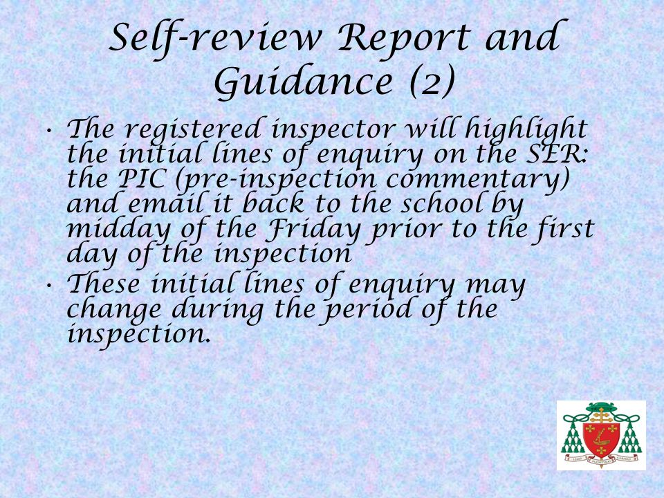 Self-review Report and Guidance (2)