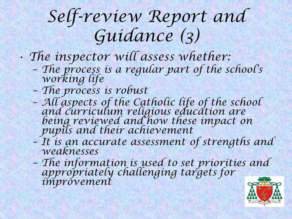 Self-review Report and Guidance (3)