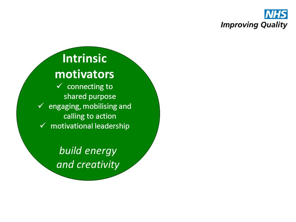 Intrinsic motivators build energy and creativity