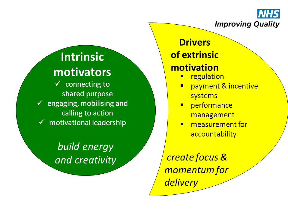Intrinsic motivators build energy and creativity Drivers of extrinsic