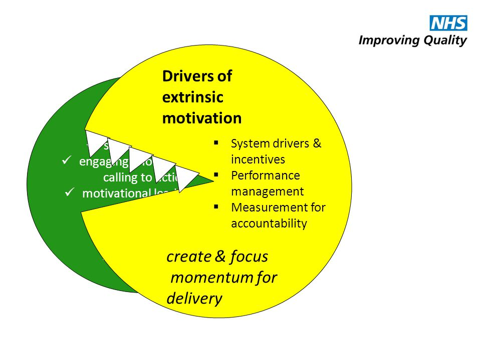 Drivers of extrinsic motivation create & focus momentum for delivery