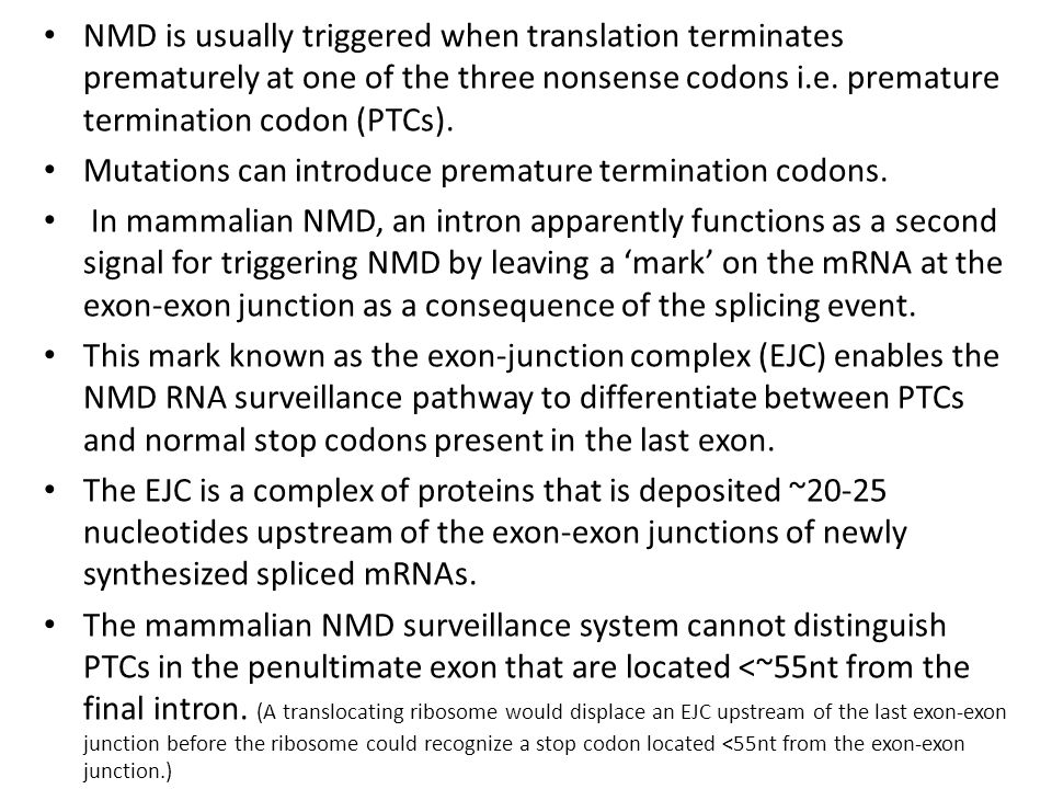 Mutations can introduce premature termination codons.