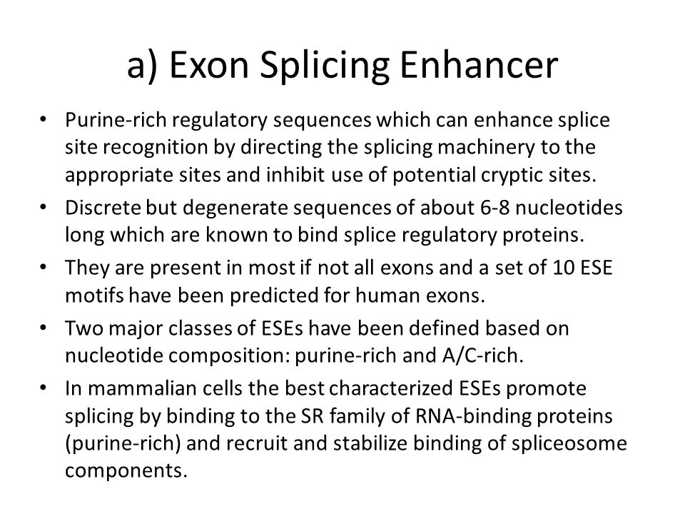 a) Exon Splicing Enhancer