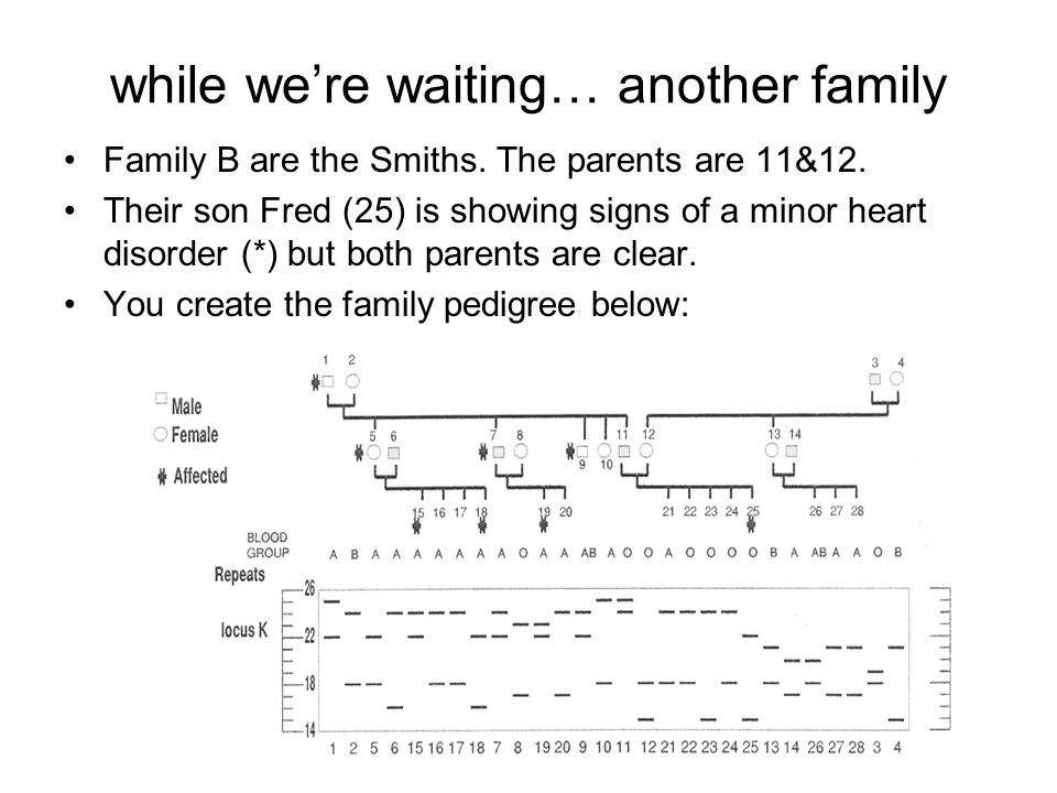 while we're waiting… another family