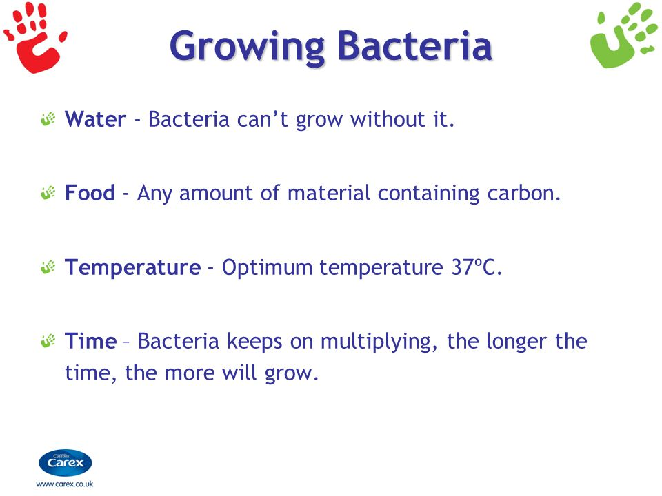 Growing Bacteria Water - Bacteria can't grow without it.