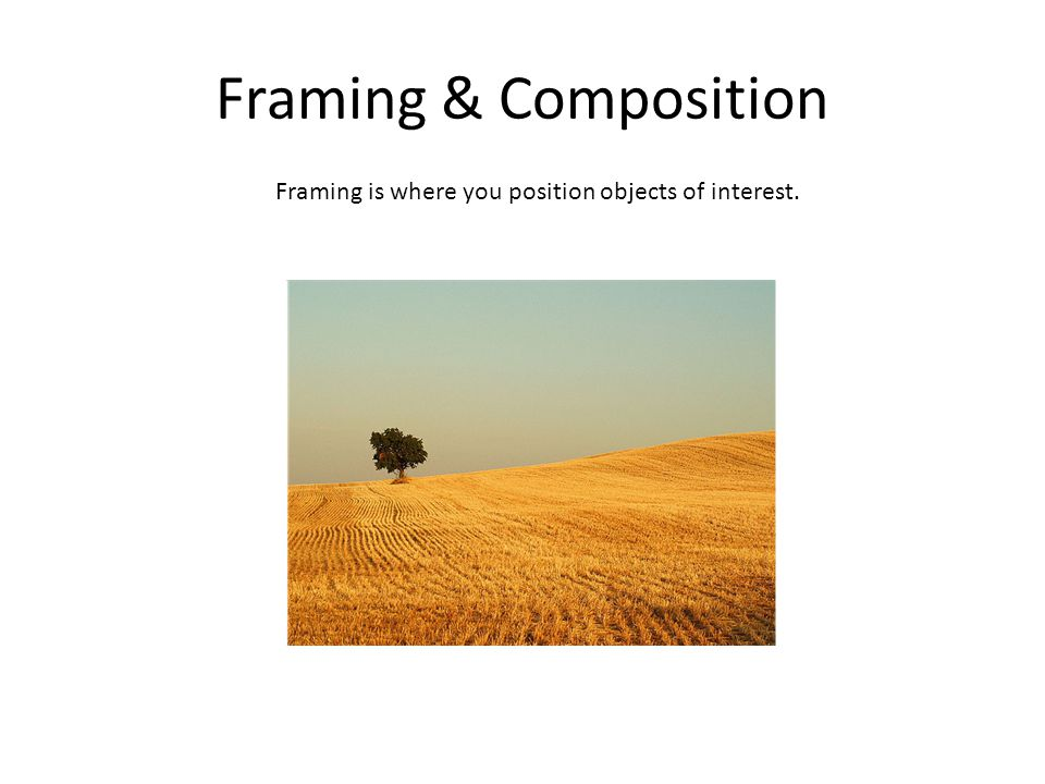 Framing & Composition Framing is where you position objects of interest.
