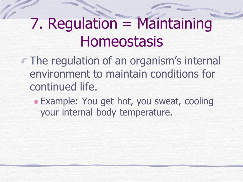 7. Regulation = Maintaining Homeostasis