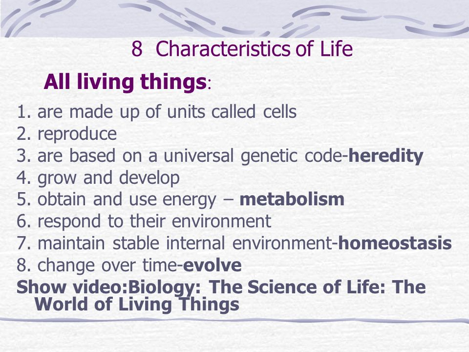 8 Characteristics of Life