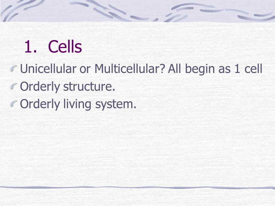 1. Cells Unicellular or Multicellular All begin as 1 cell