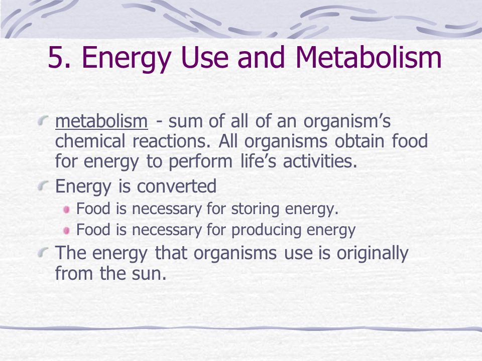 5. Energy Use and Metabolism