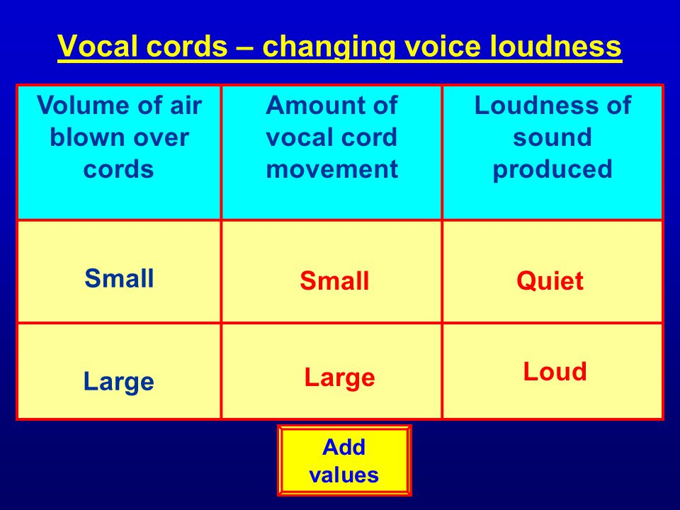 Vocal cords – changing voice loudness