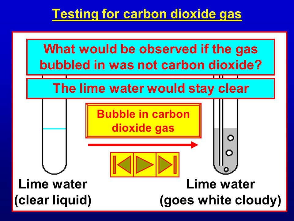 Testing for carbon dioxide gas