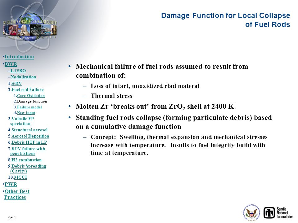 Damage Function for Local Collapse of Fuel Rods