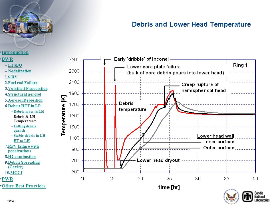 Debris and Lower Head Temperature