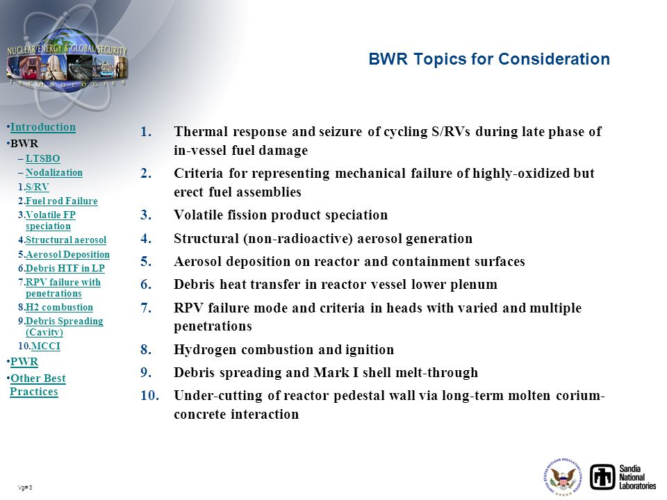 BWR Topics for Consideration