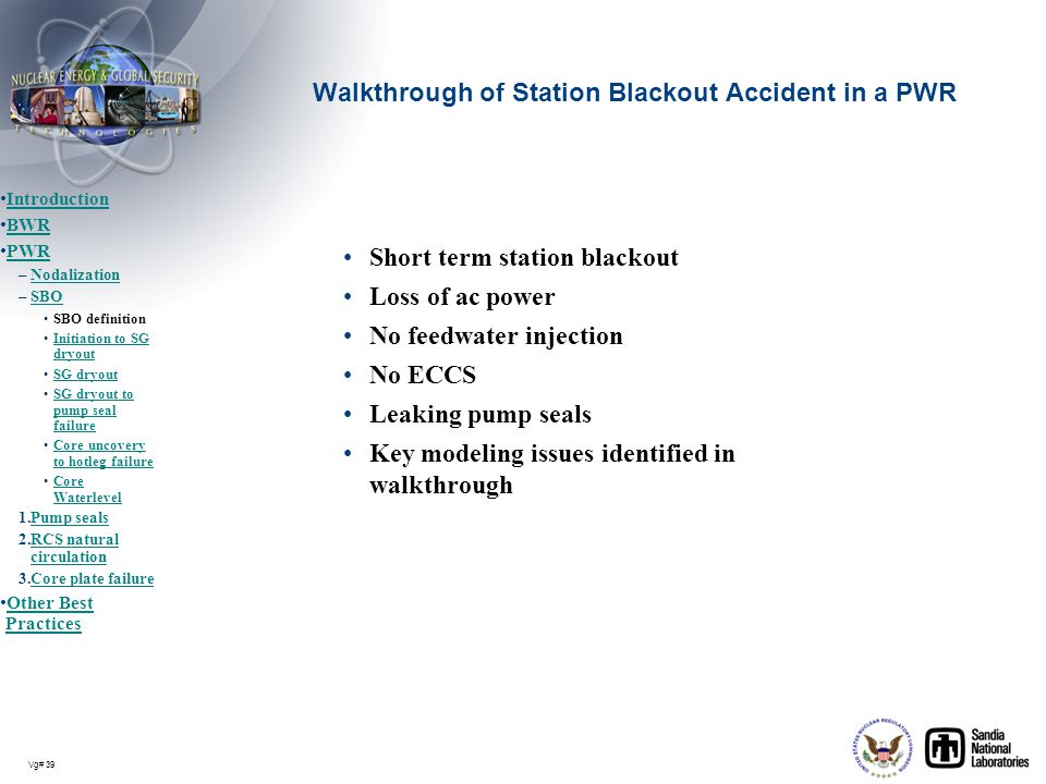 Walkthrough of Station Blackout Accident in a PWR