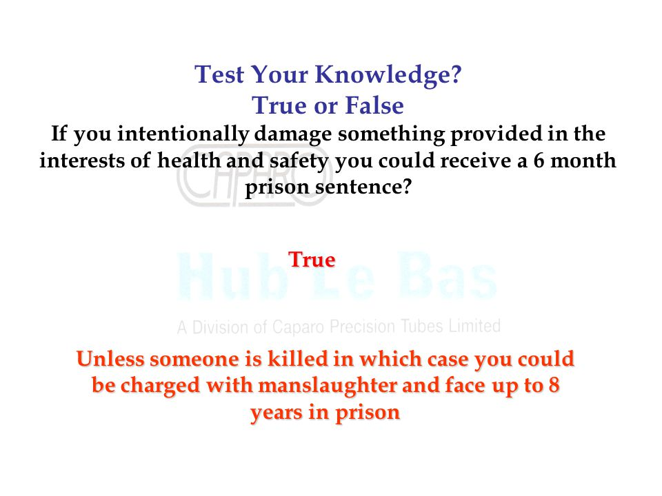 Test Your Knowledge True or False