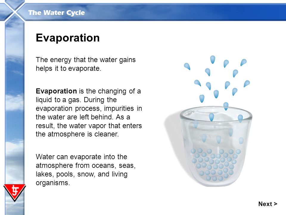 Evaporation The energy that the water gains helps it to evaporate.