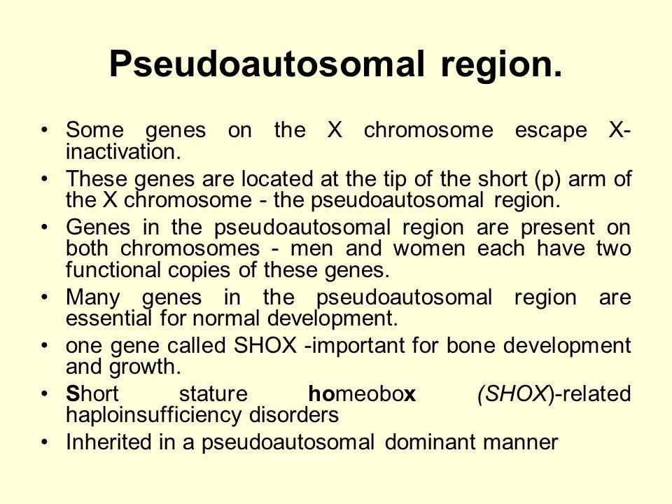 Pseudoautosomal region.