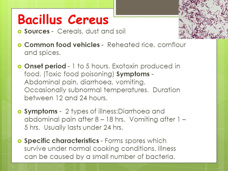 Bacillus Cereus Sources - Cereals, dust and soil
