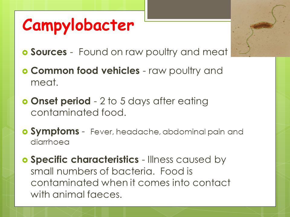 Campylobacter Sources - Found on raw poultry and meat