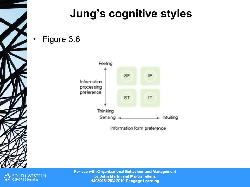 Jung's cognitive styles