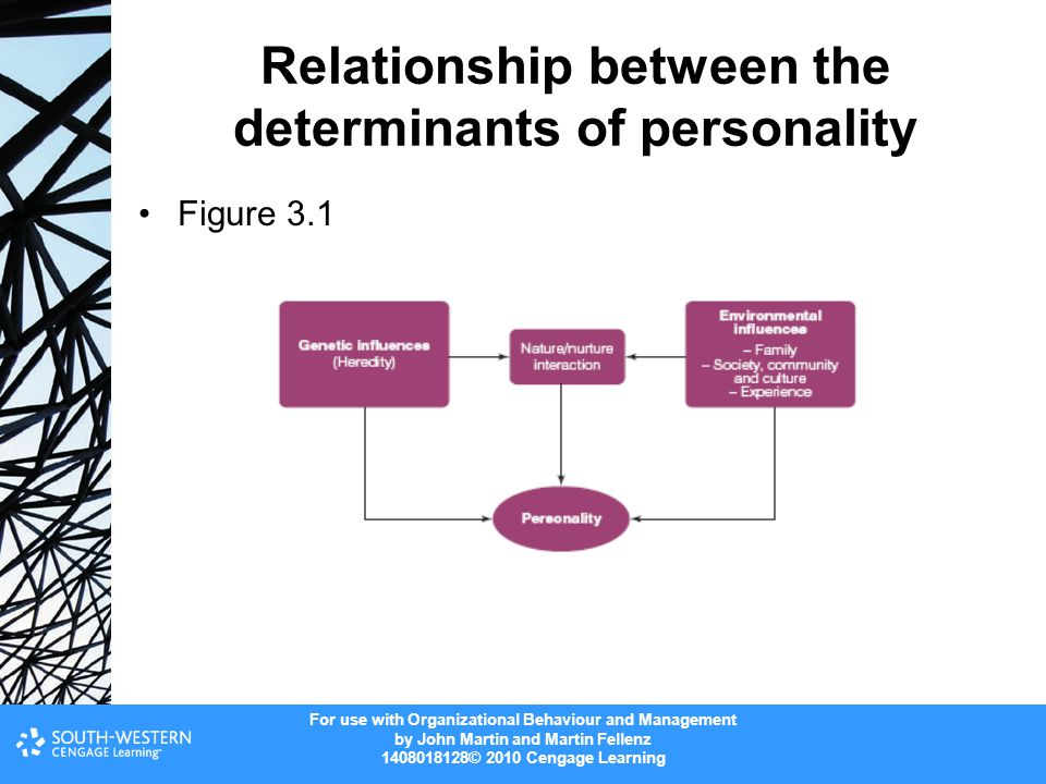 Relationship between the determinants of personality