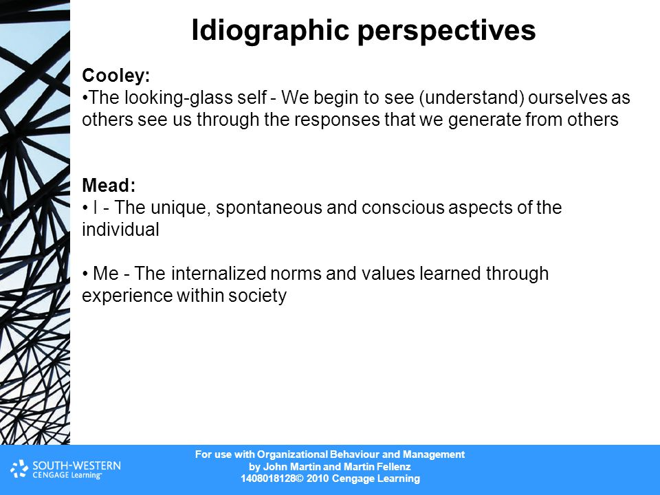 Idiographic perspectives