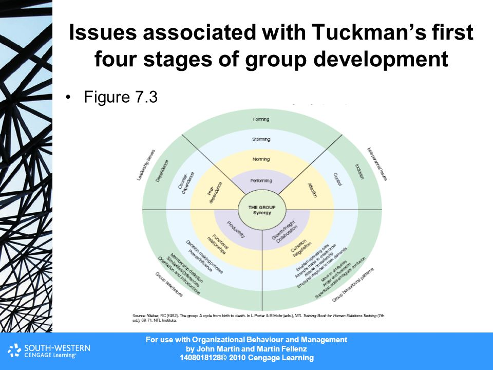 Issues associated with Tuckman's first four stages of group development