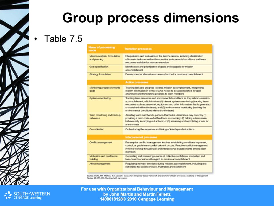 Group process dimensions