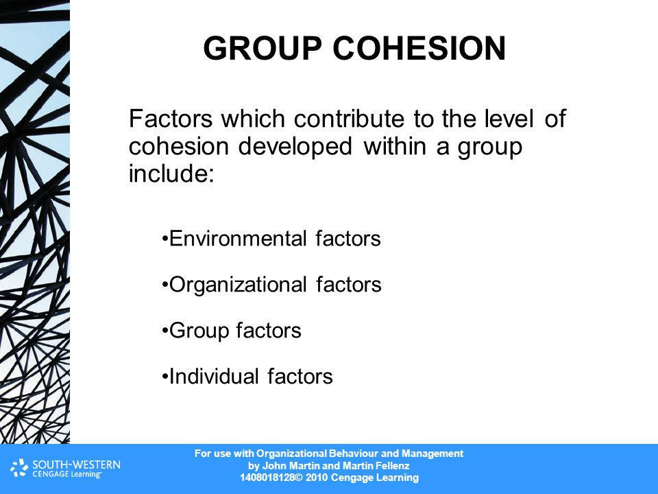 GROUP COHESION Factors which contribute to the level of cohesion developed within a group include: Environmental factors.