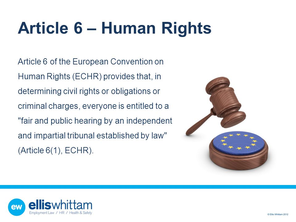 Article 6 – Human Rights