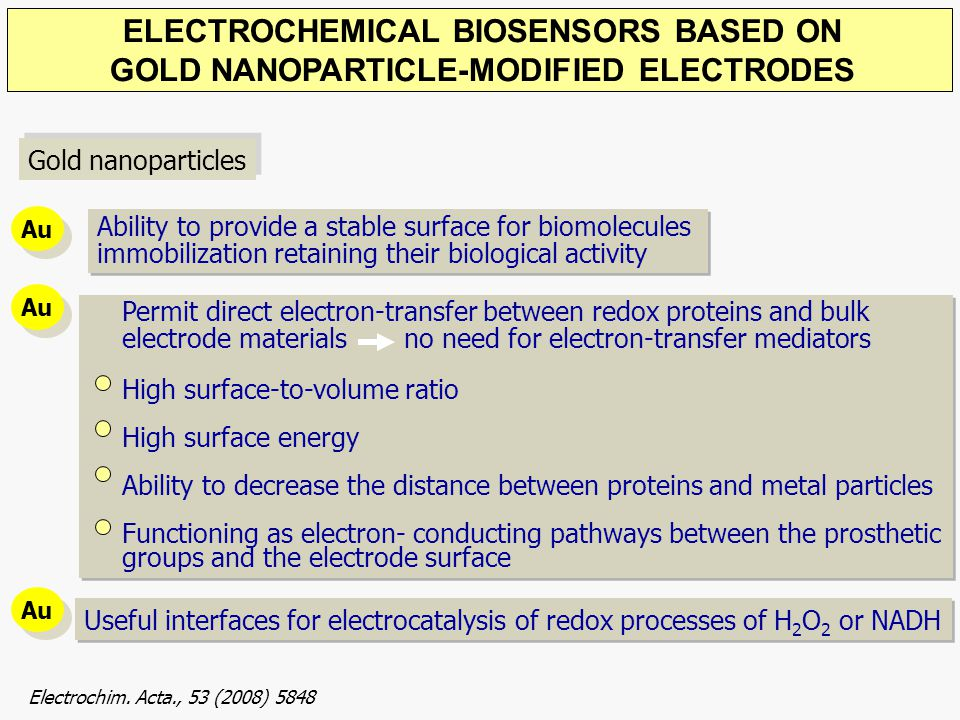 ELECTROCHEMICAL BIOSENSORS BASED ON