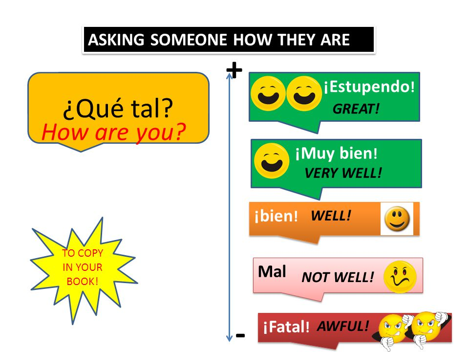 + - ¿Qué tal How are you ASKING SOMEONE HOW THEY ARE ¡Estupendo!