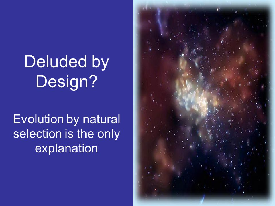 Deluded by Design Evolution by natural selection is the only explanation