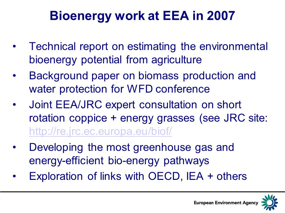 Bioenergy work at EEA in 2007