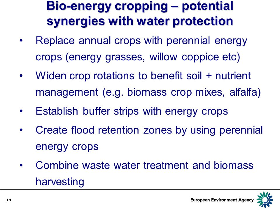 Bio-energy cropping – potential synergies with water protection