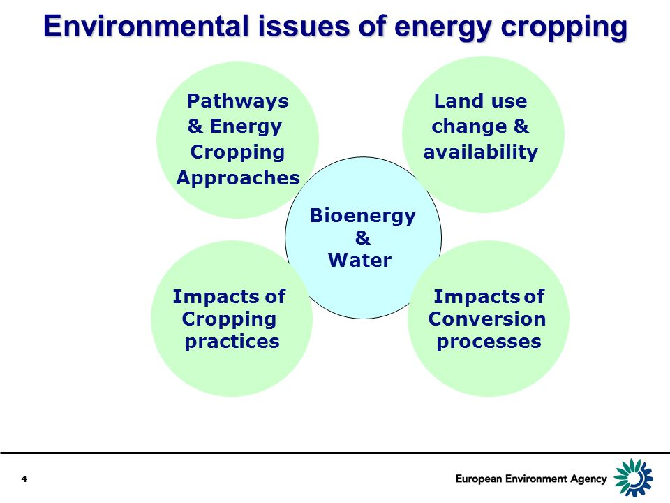 Environmental issues of energy cropping