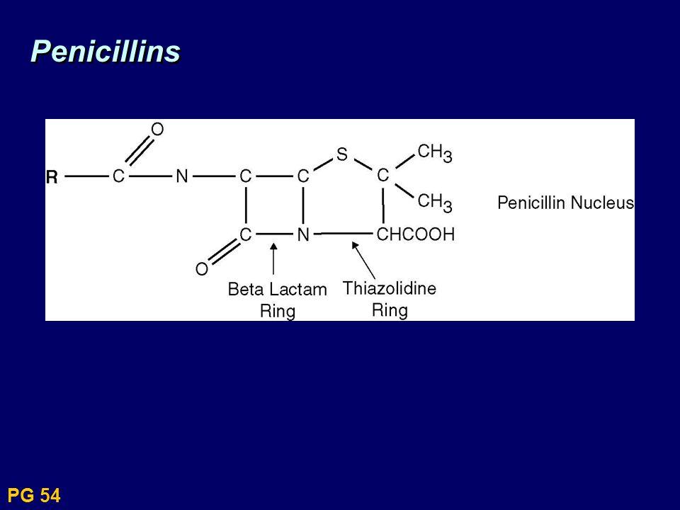 Penicillins PG 54